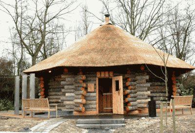 Одноэтажная баня из сосны